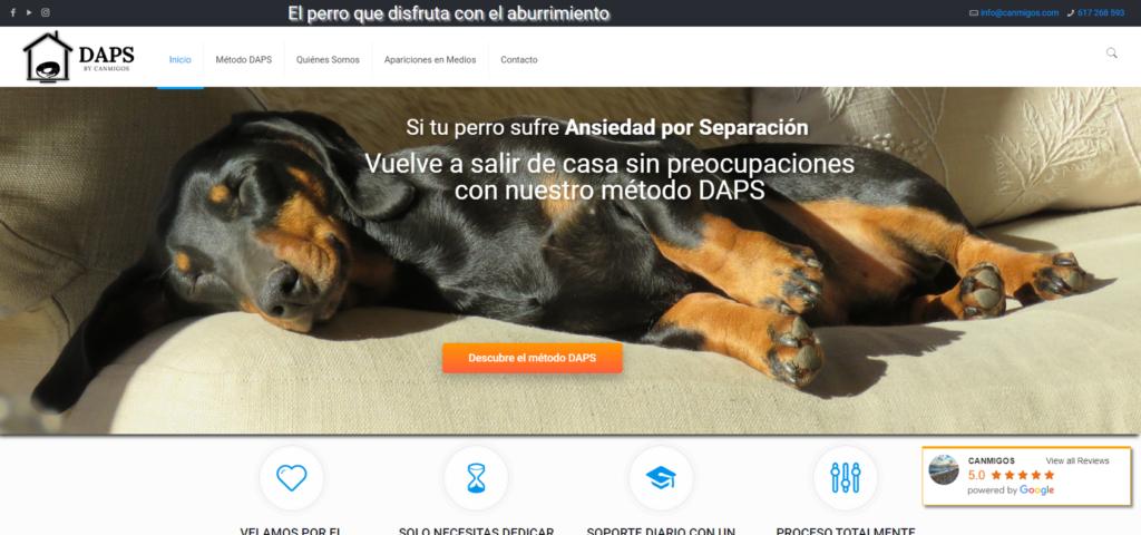 Portada web APS