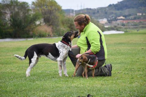 Juanjo García Romo Educador canino
