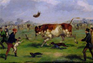 Cuadrode lucha con toro en Inglaterra