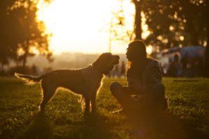 El vínculo con nuestro perro y convertirnos en un referente son claves para la gestión de los miedos